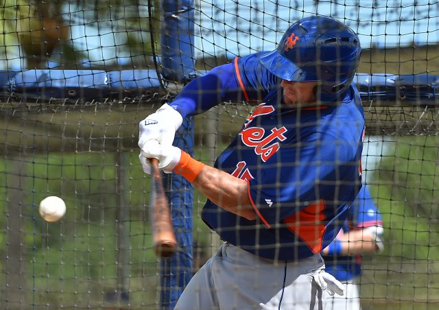Sep 20, 2016; Port St. Lucie, FL, USA; New York Mets outfielder Tim Tebow (15) hits during his workout at the Mets Minor League Complex. Mandatory Credit: Jasen Vinlove-USA TODAY Sports