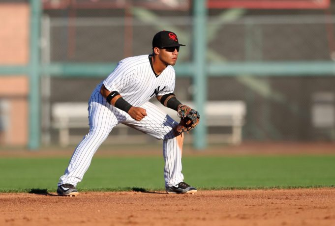 New York Yankees young stud Gleyber Torres has much to prove ... and he will