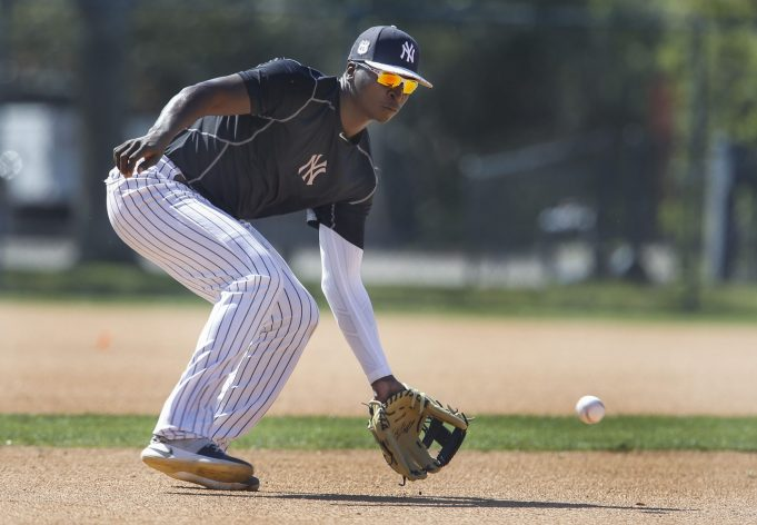 New York Yankees: Didi Gregorius Goes Off On Chinese Taipei In WBC
