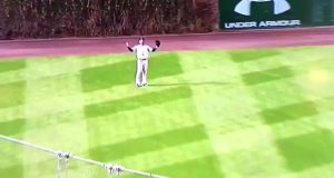 New York Yankees: Aaron Hicks Takes Impeccable Route To Ball (Video)