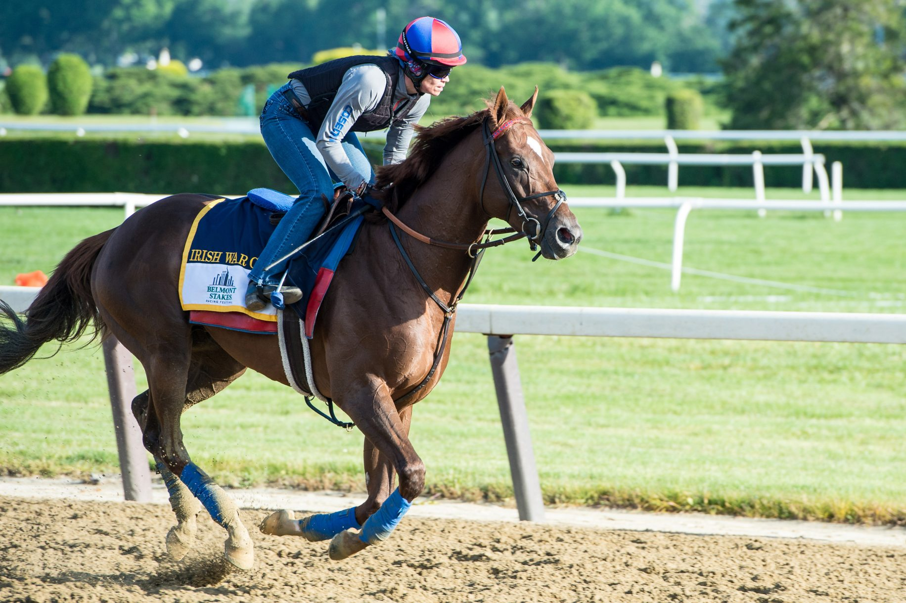 2017 Belmont Stakes Preview and Analysis: Irish War Cry Morning Line Favorite 1