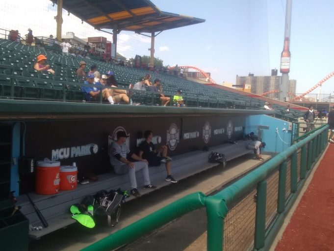 Behind Timely Hitting, Brooklyn Cyclones Split Series with Staten Island