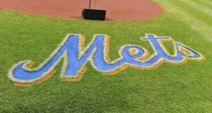 New York Mets Prospect Logan Taylor Attacked With Tire Iron