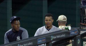 New York Yankees: Luis Severino Befriends Potential New Mascot (Video)