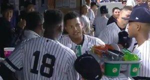 New York Yankees: Ronald Torreyes Has Found His New Career (Video)