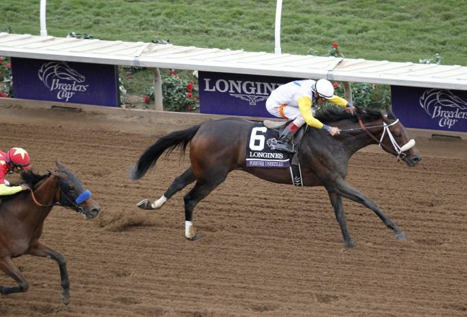 Forever Unbridled Wins Breeders' Cup Distaff