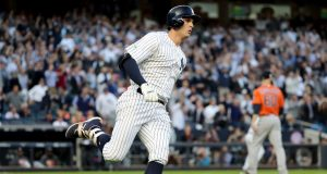 New York Yankees, Greg Bird