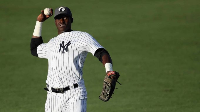 Estevan Florial New York Yankees