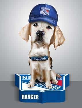 Ranger, New York Rangers service dog