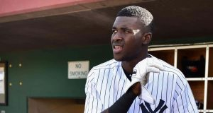 Estevan Florial, New York Yankees
