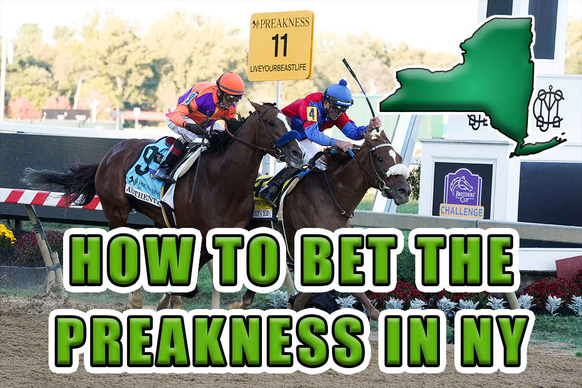 how to bet preakness ny