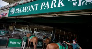 how to bet belmont stakes online